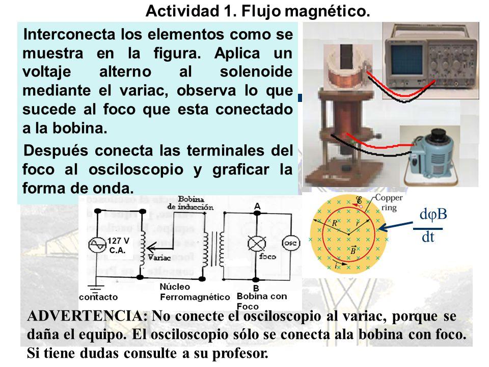 Actividad 1. Flujo magnético.