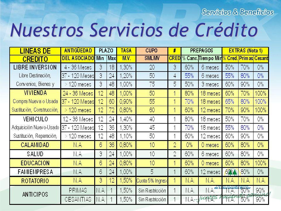 CONDICIONES POR LINEA DE CREDITO