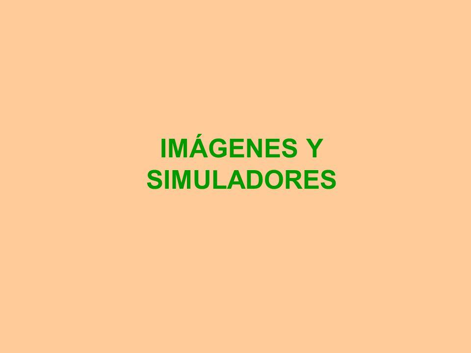 IMÁGENES Y SIMULADORES