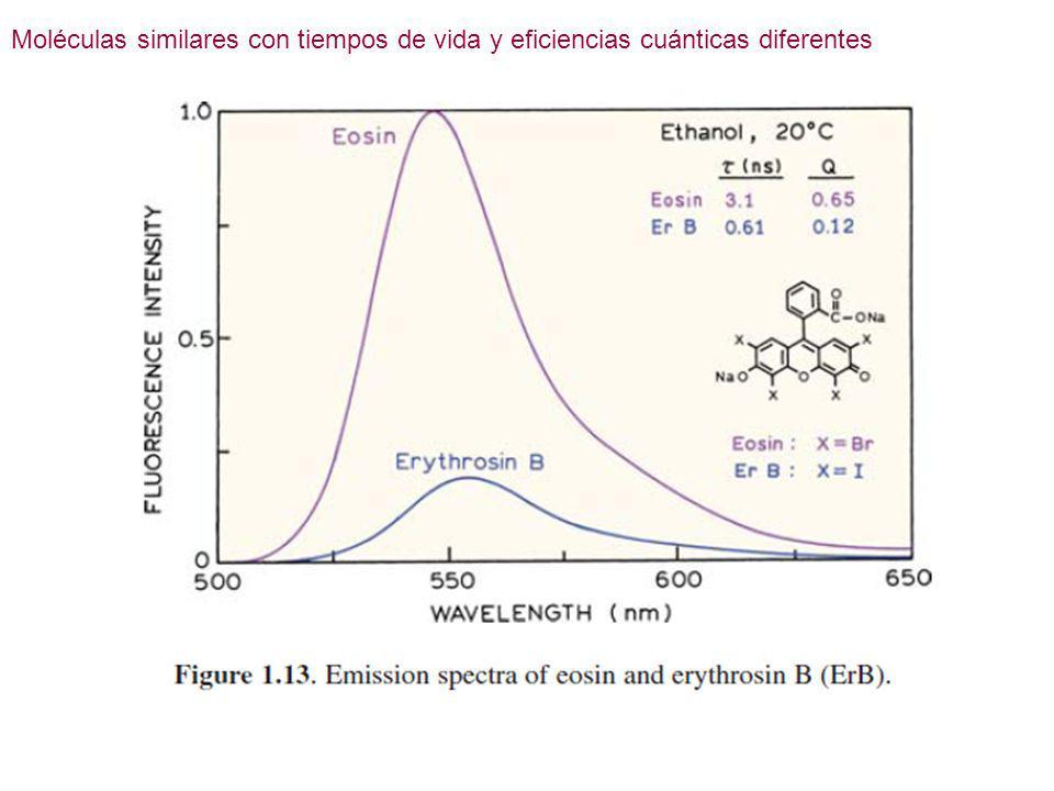 Moléculas similares con tiempos de vida y eficiencias cuánticas diferentes