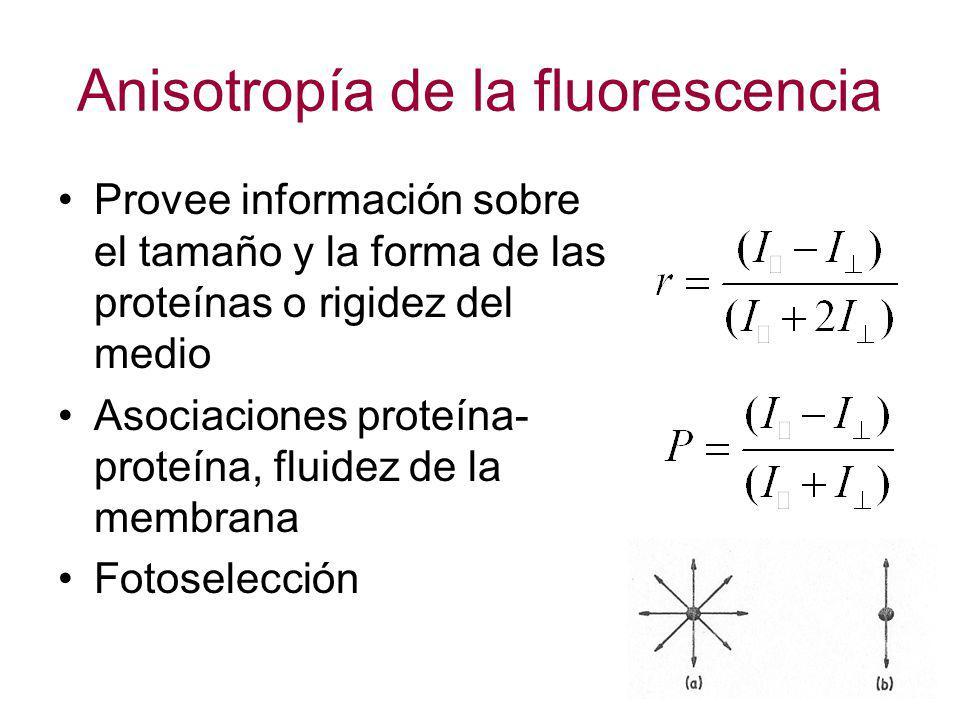 Anisotropía de la fluorescencia