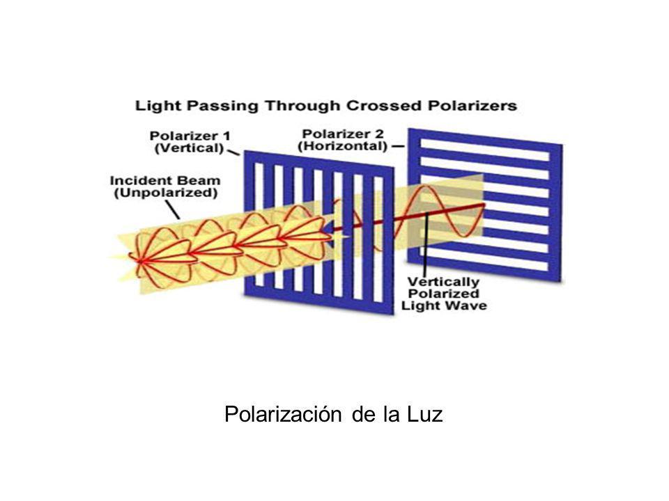 Polarización de la Luz