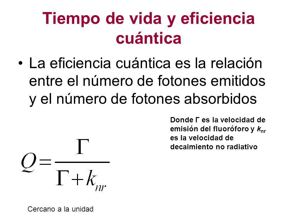 Tiempo de vida y eficiencia cuántica