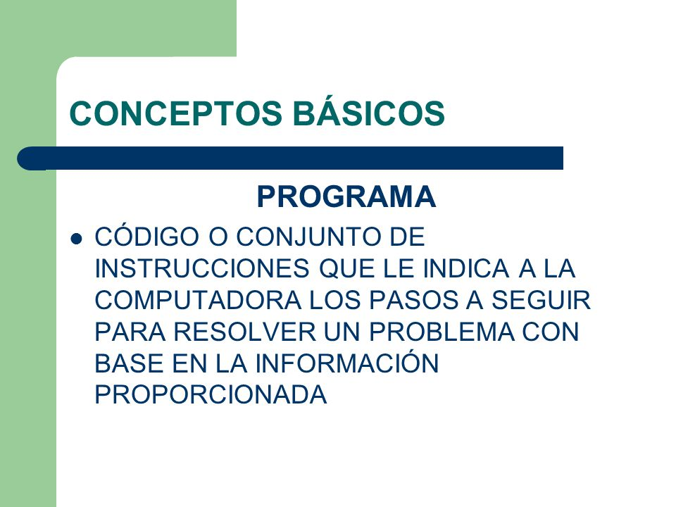 CONCEPTOS BÁSICOS PROGRAMA