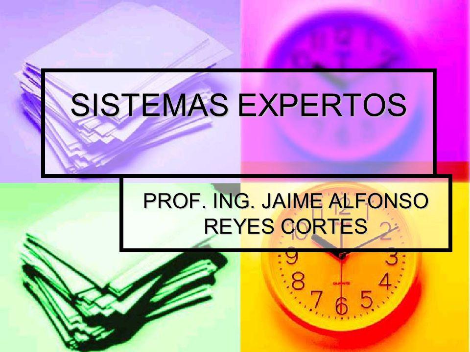 PROF. ING. JAIME ALFONSO REYES CORTES