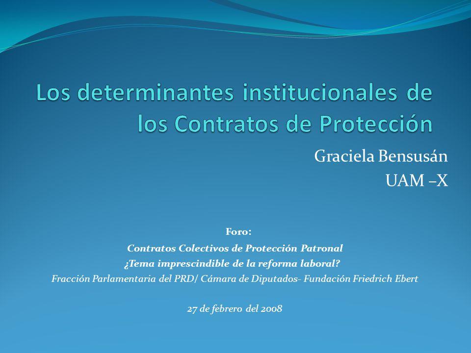 Los determinantes institucionales de los Contratos de Protección