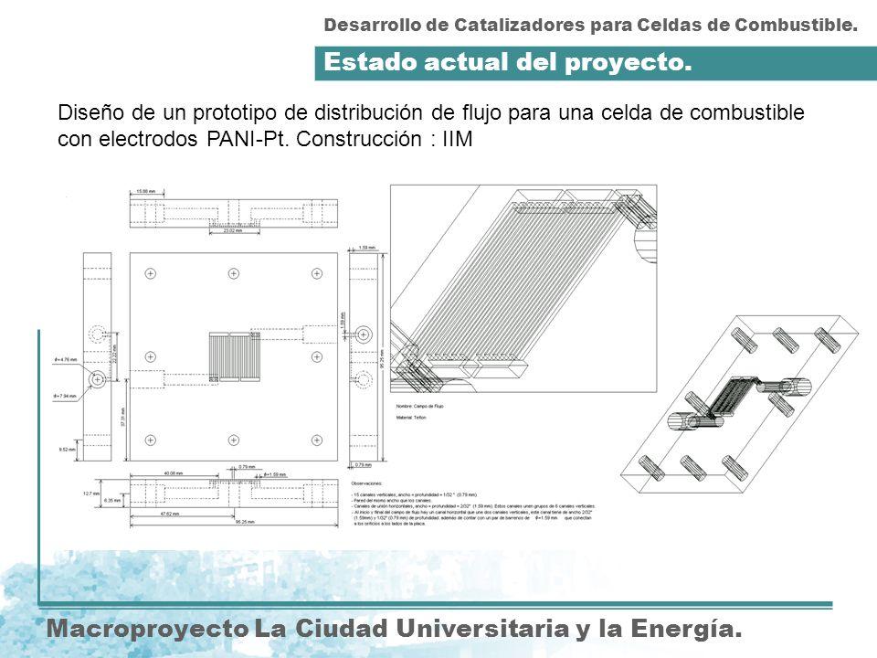 Estado actual del proyecto.