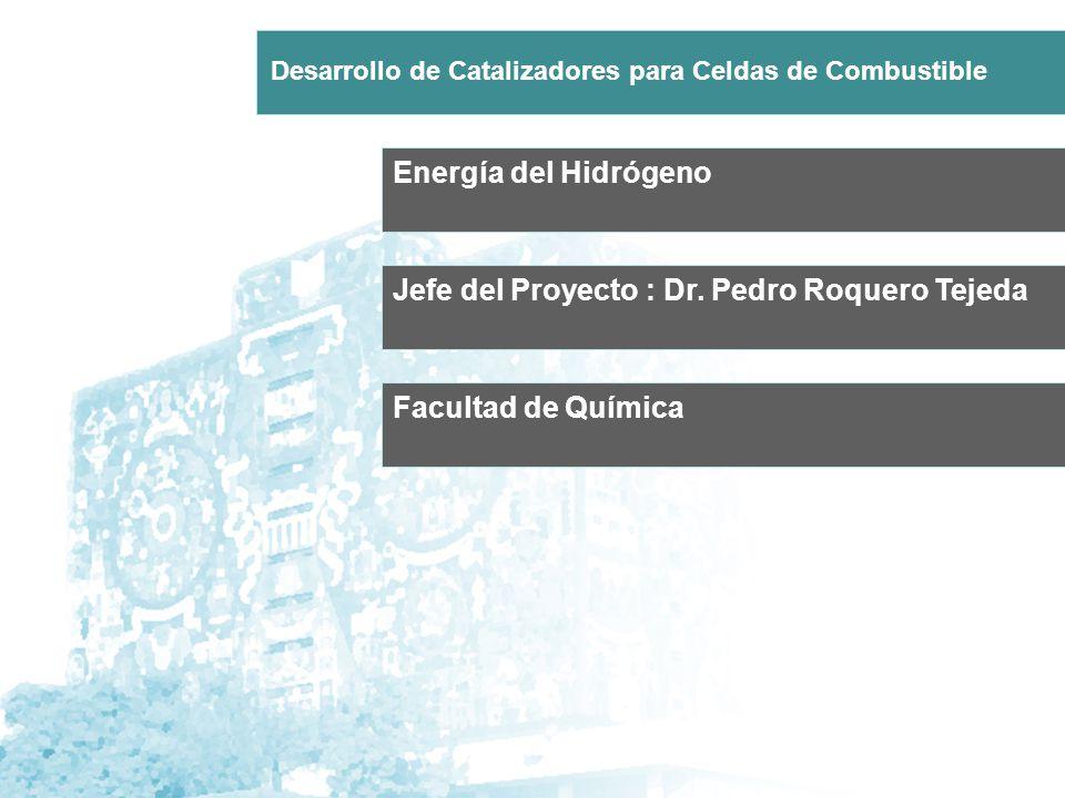 Jefe del Proyecto : Dr. Pedro Roquero Tejeda