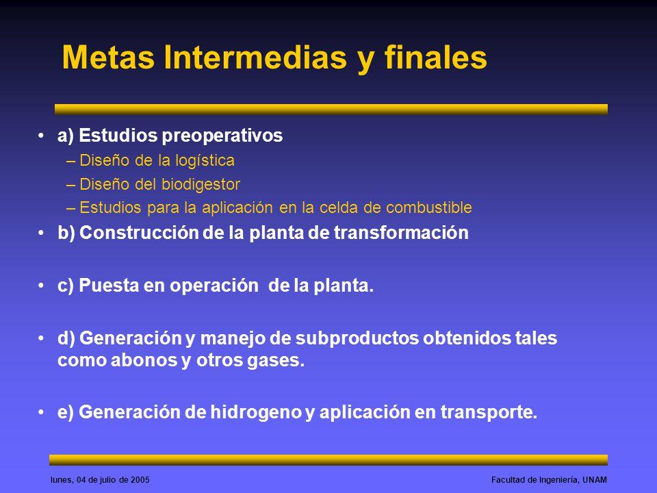 Metas Intermedias y finales