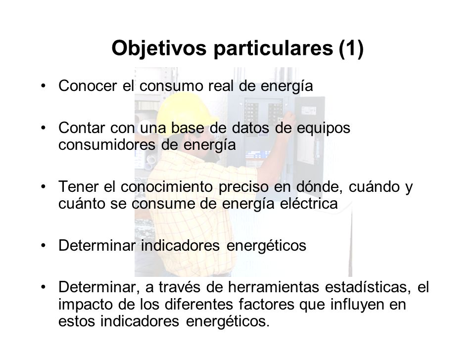 Objetivos particulares (1)