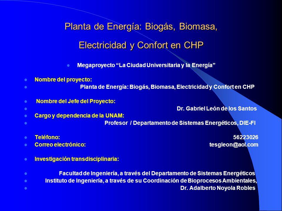 Planta de Energía: Biogás, Biomasa, Electricidad y Confort en CHP