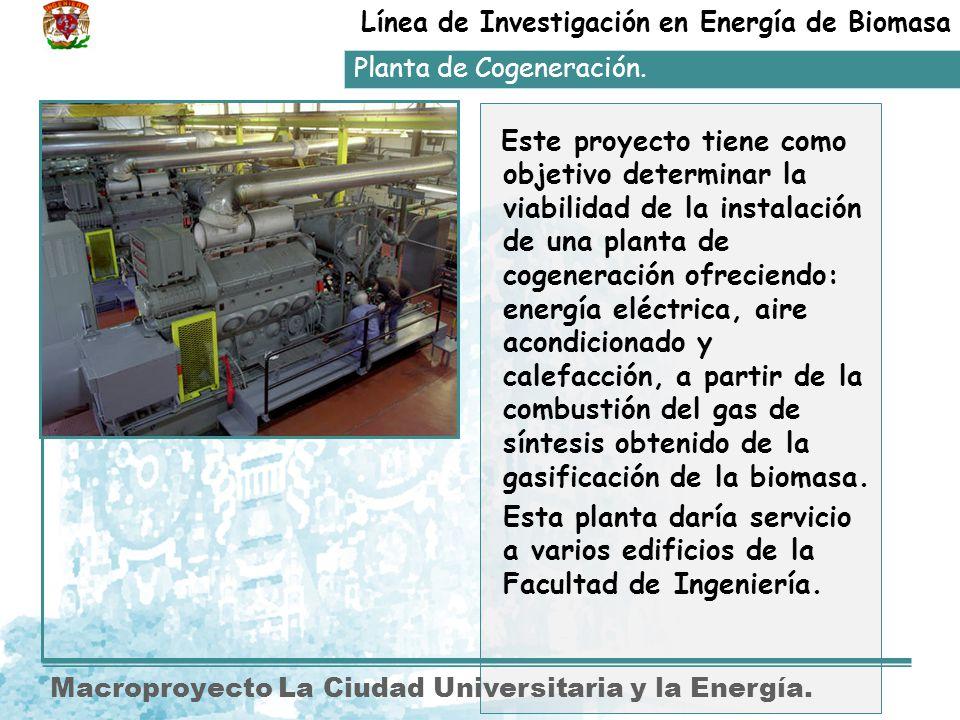 Línea de Investigación en Energía de Biomasa
