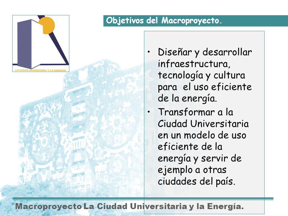 Objetivos del Macroproyecto.