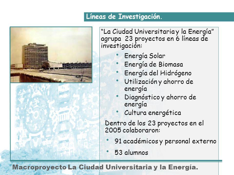 Dentro de los 23 proyectos en el 2005 colaboraron: