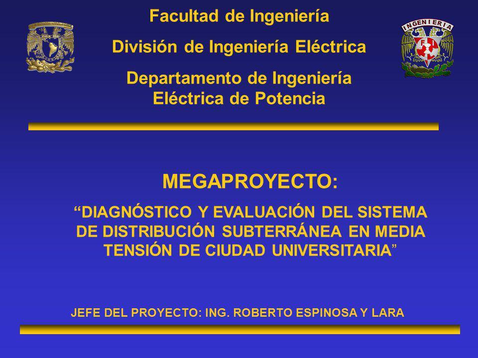 MEGAPROYECTO: Facultad de Ingeniería División de Ingeniería Eléctrica