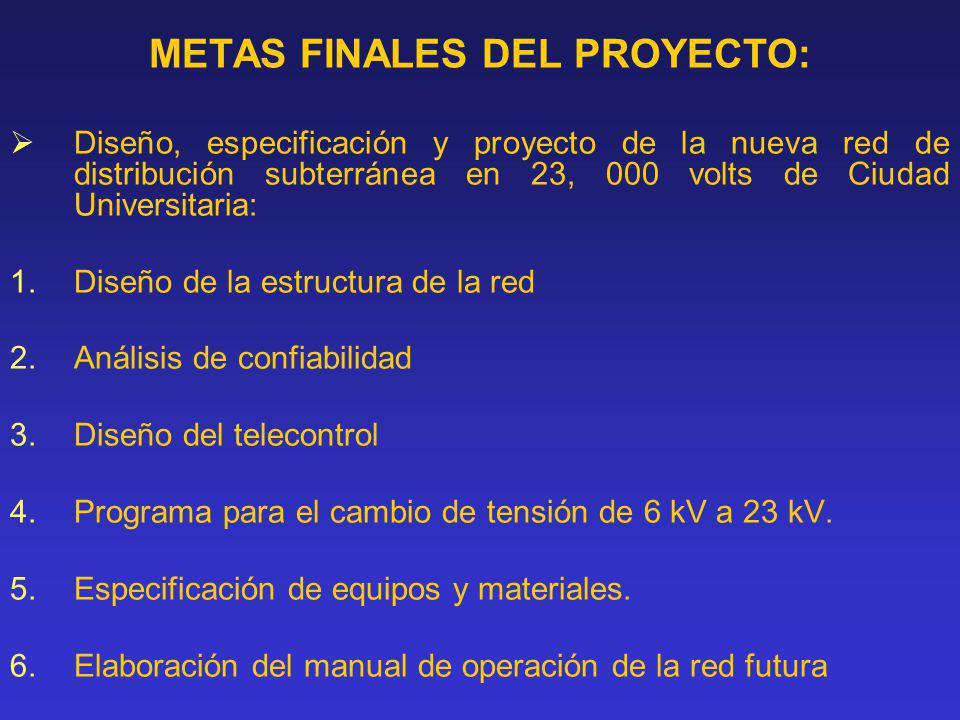 METAS FINALES DEL PROYECTO:
