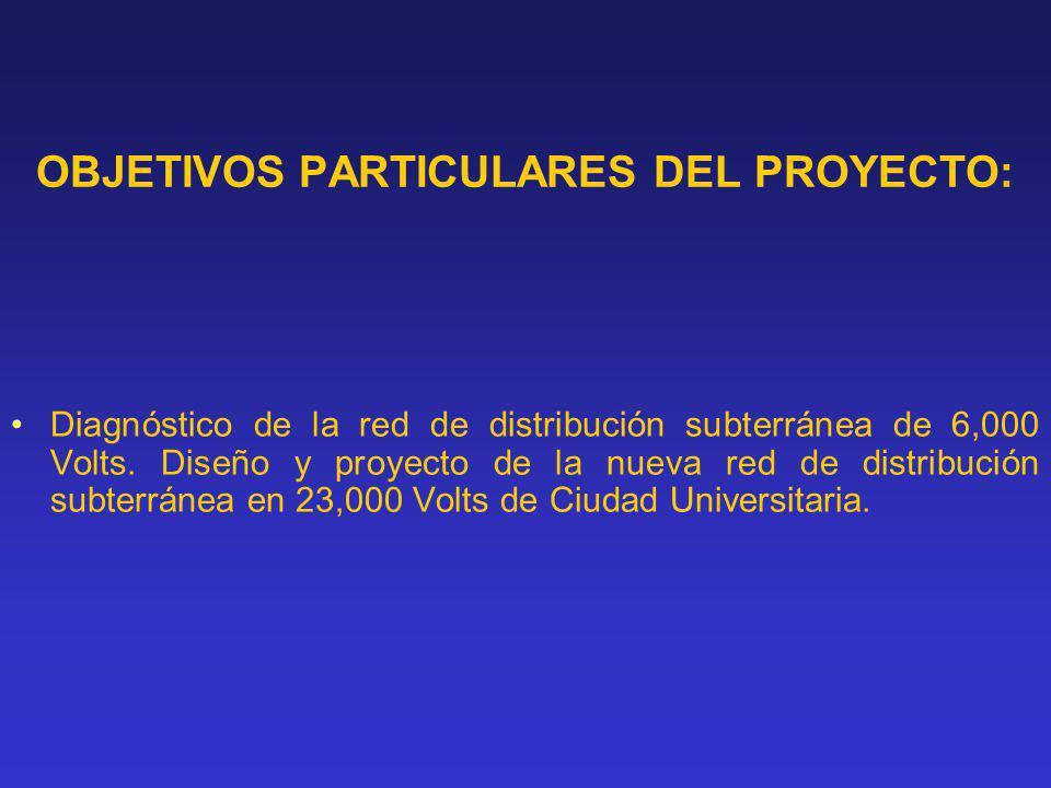 OBJETIVOS PARTICULARES DEL PROYECTO: