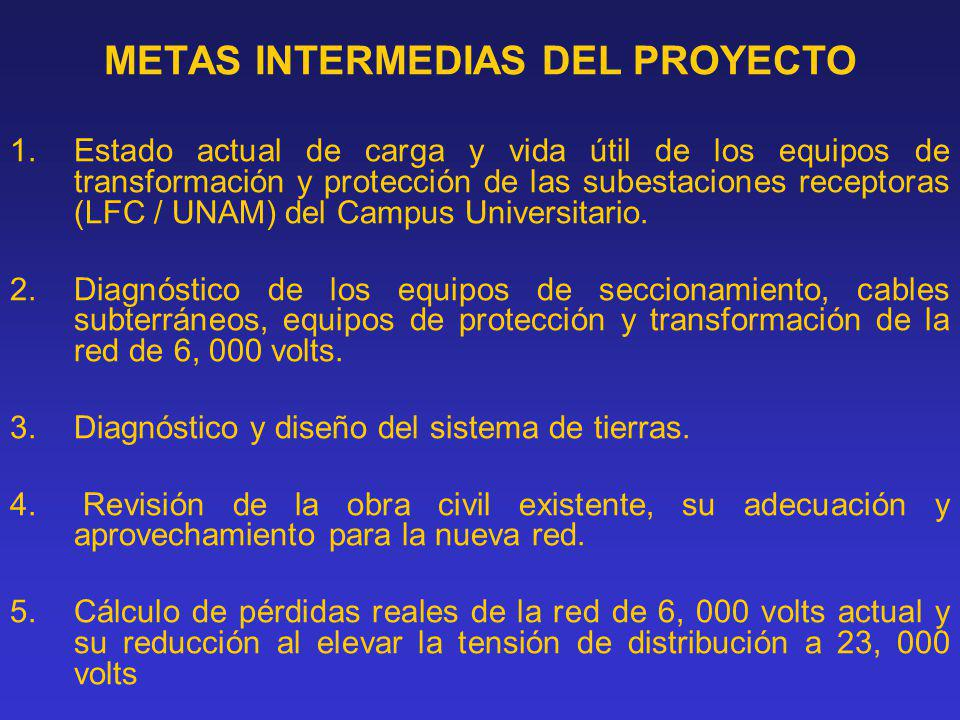 METAS INTERMEDIAS DEL PROYECTO