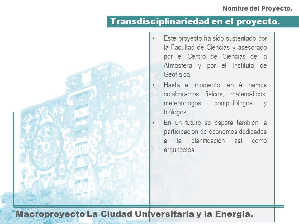 Transdisciplinariedad en el proyecto.