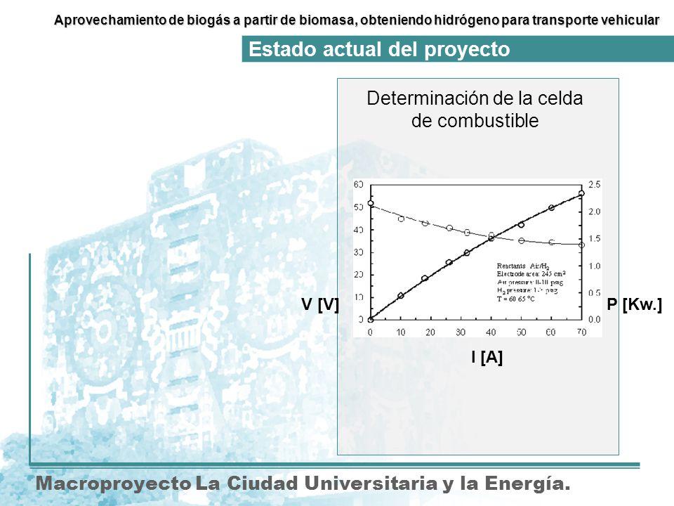 Determinación de la celda de combustible