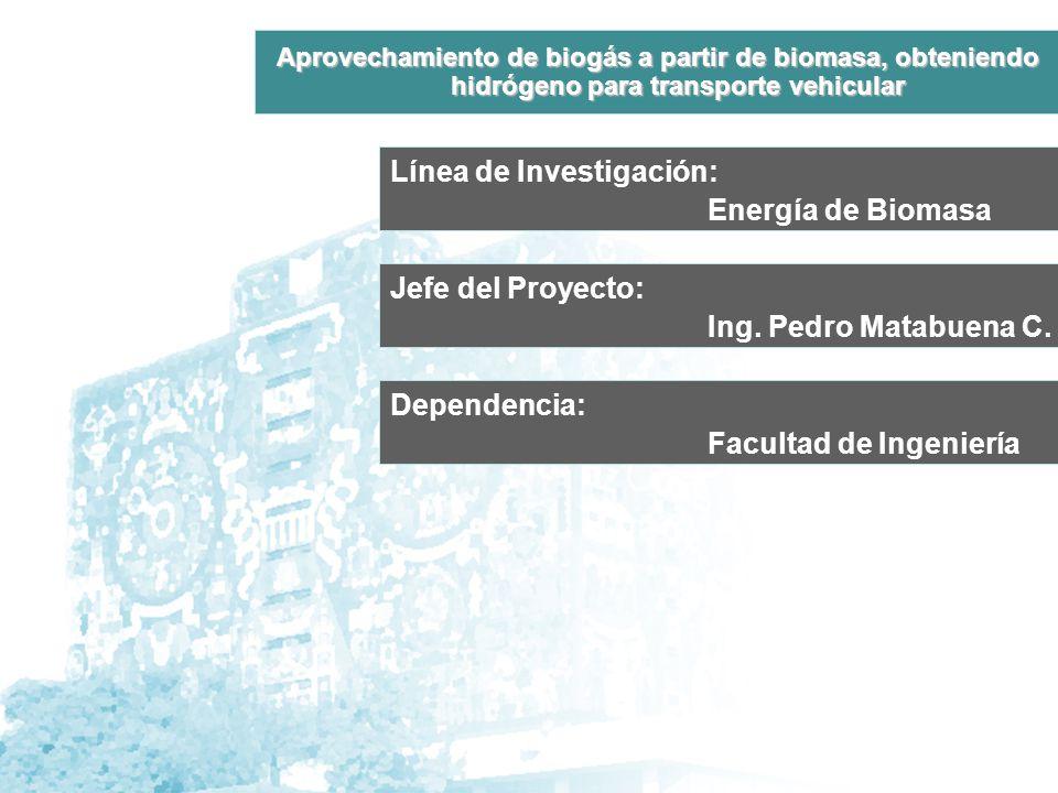 Línea de Investigación: Energía de Biomasa