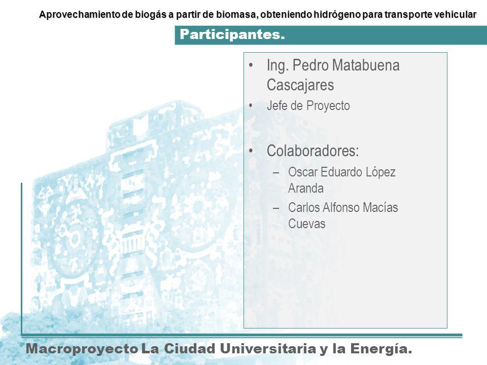 Ing. Pedro Matabuena Cascajares