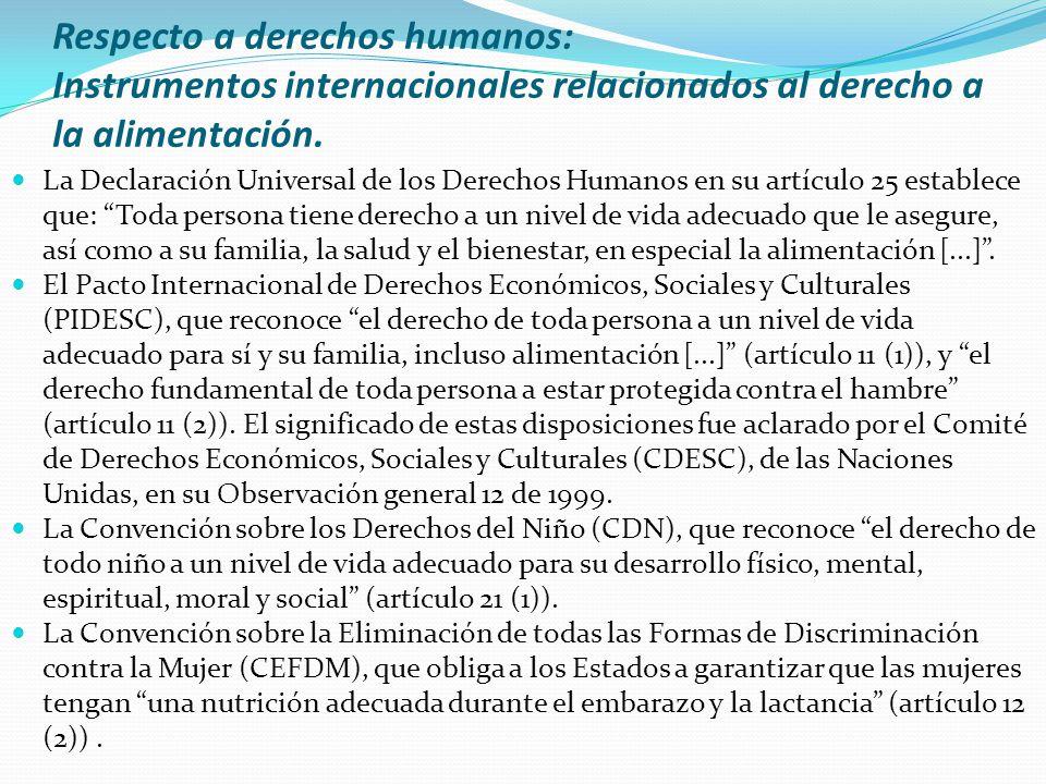 Respecto a derechos humanos: Instrumentos internacionales relacionados al derecho a la alimentación.