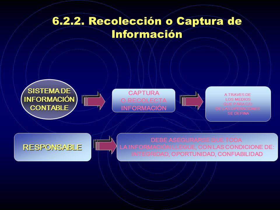 6.2.2. Recolección o Captura de Información