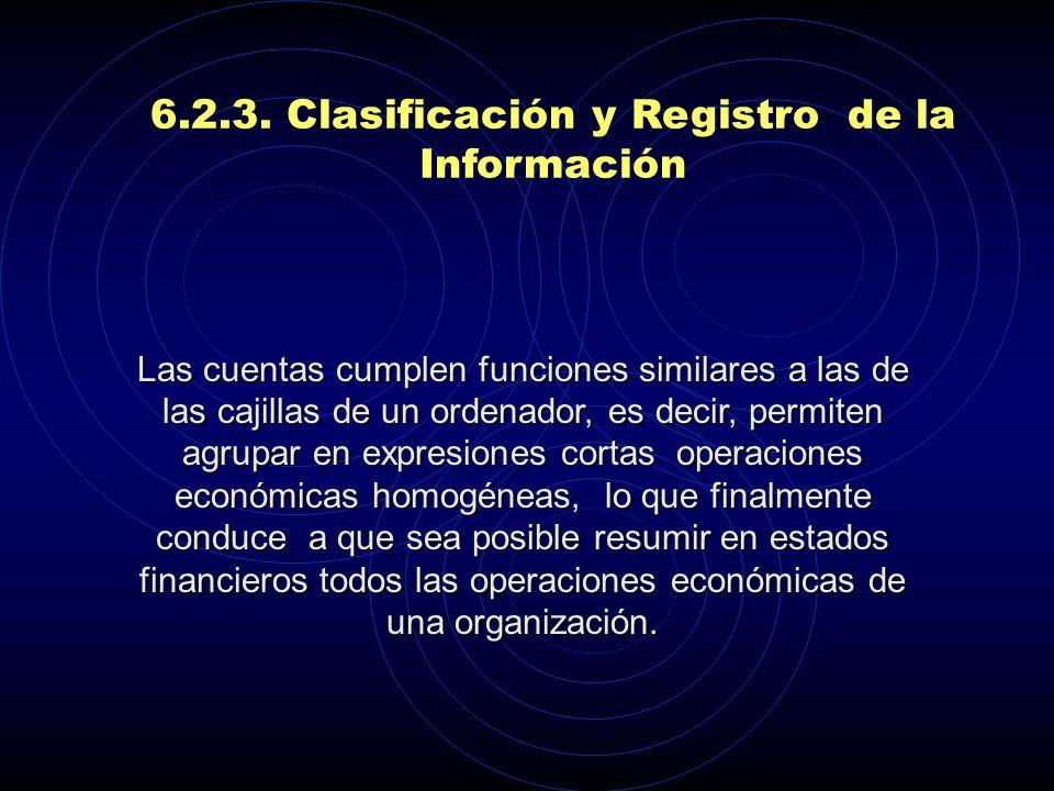 6.2.3. Clasificación y Registro de la Información