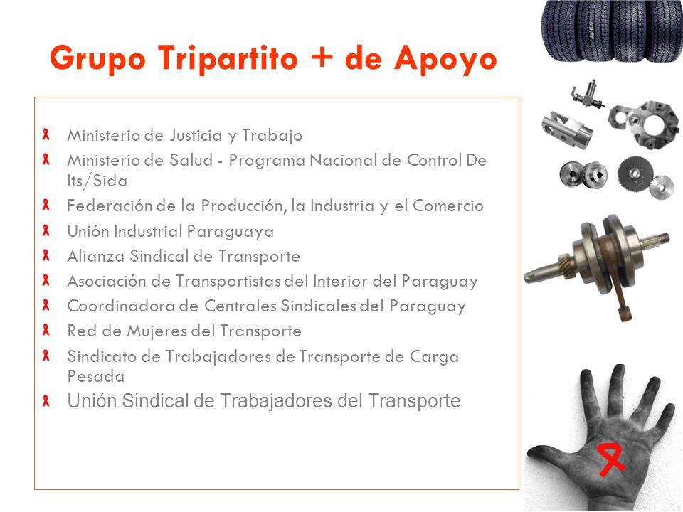 Grupo Tripartito + de Apoyo