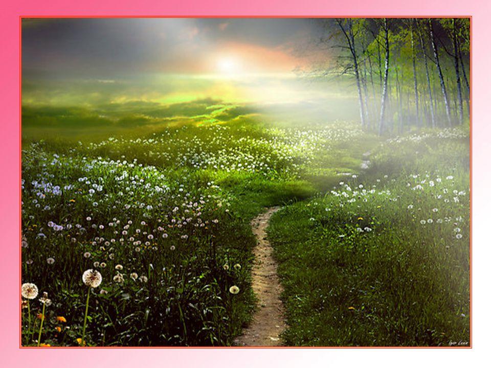 Empezó a caminar por el sendero de Jerusalén. Iba a pie.