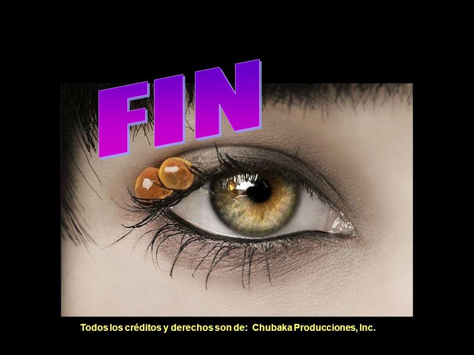 FIN FIN Todos los créditos y derechos son de: Chubaka Producciones, Inc.