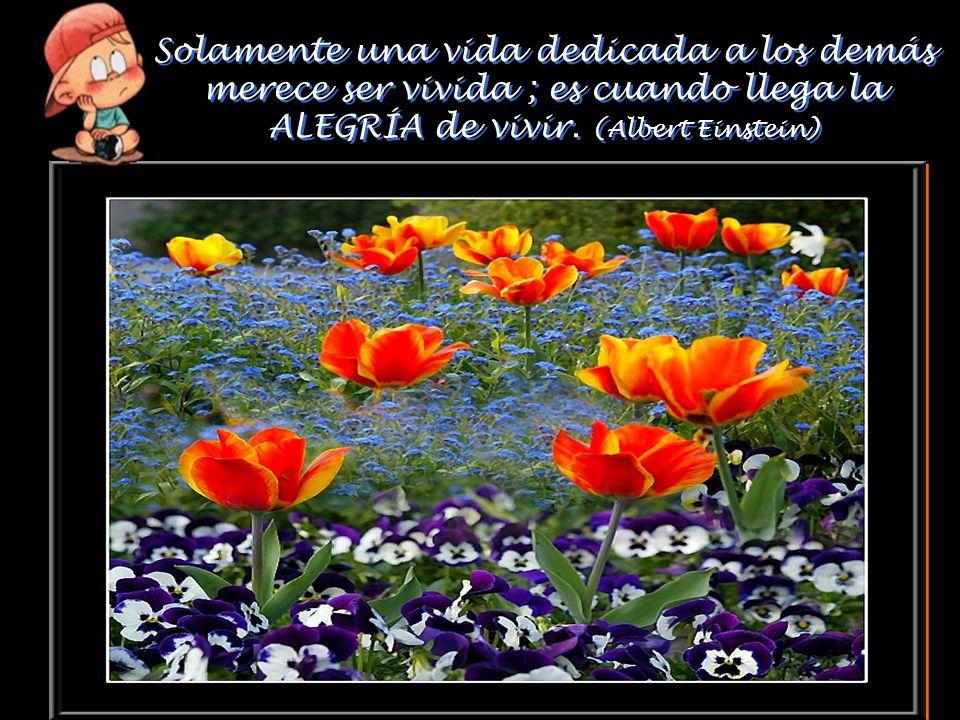 Solamente una vida dedicada a los demás merece ser vivida ; es cuando llega la ALEGRÍA de vivir. (Albert Einstein)