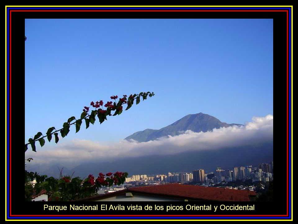Parque Nacional El Avila vista de los picos Oriental y Occidental