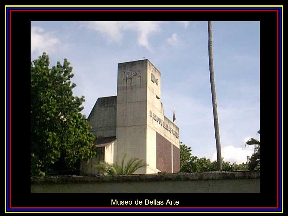 Museo de Bellas Arte