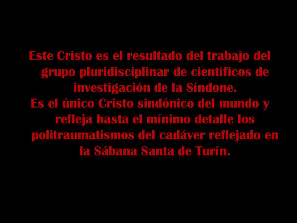 Este Cristo es el resultado del trabajo del grupo pluridisciplinar de científicos de investigación de la Síndone.