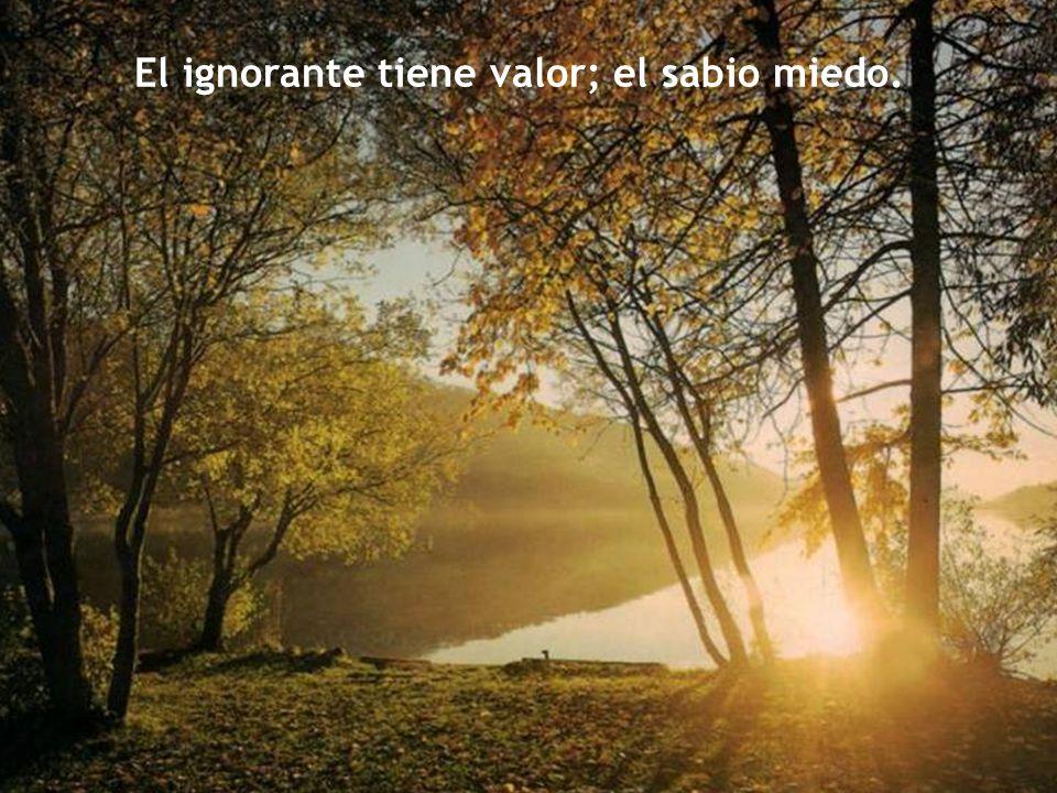 El ignorante tiene valor; el sabio miedo.