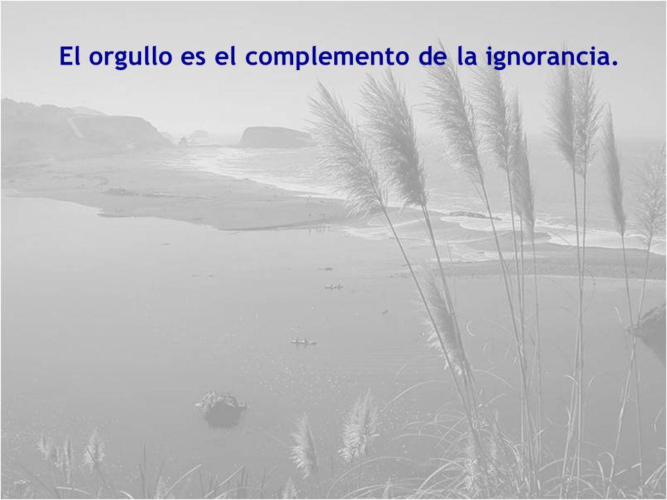El orgullo es el complemento de la ignorancia.