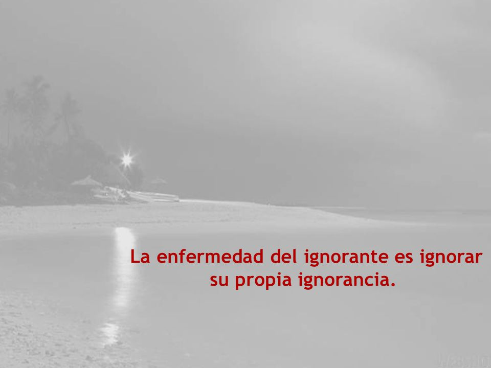 La enfermedad del ignorante es ignorar