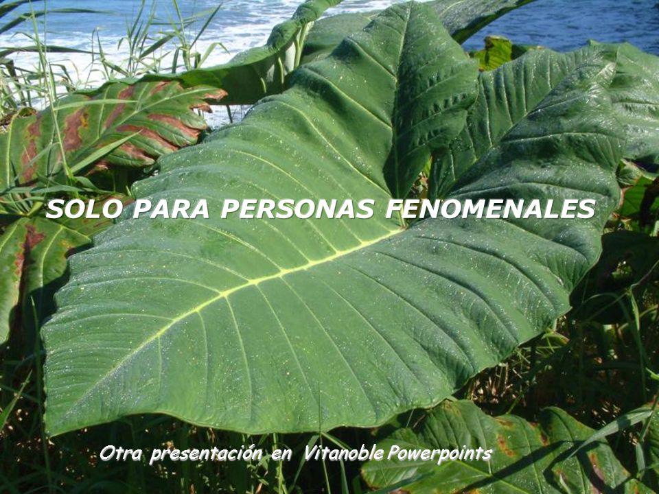SOLO PARA PERSONAS FENOMENALES