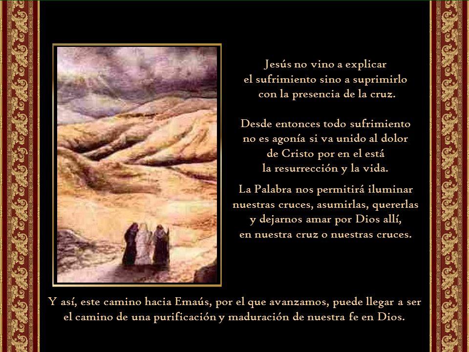 Jesús no vino a explicar el sufrimiento sino a suprimirlo