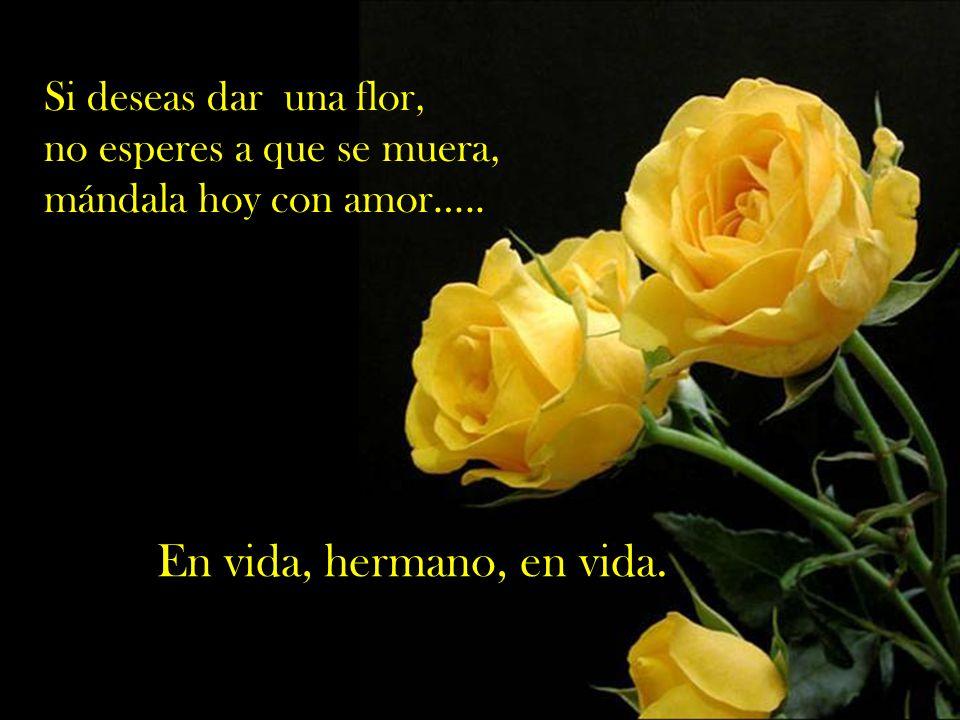 En vida, hermano, en vida. Si deseas dar una flor,