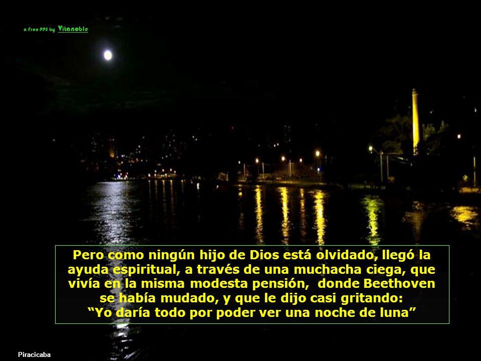 Yo daría todo por poder ver una noche de luna