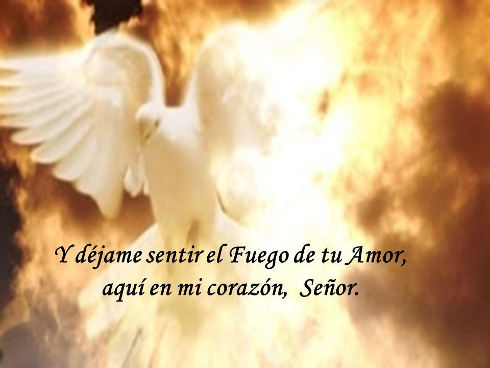 Y déjame sentir el Fuego de tu Amor, aquí en mi corazón, Señor.