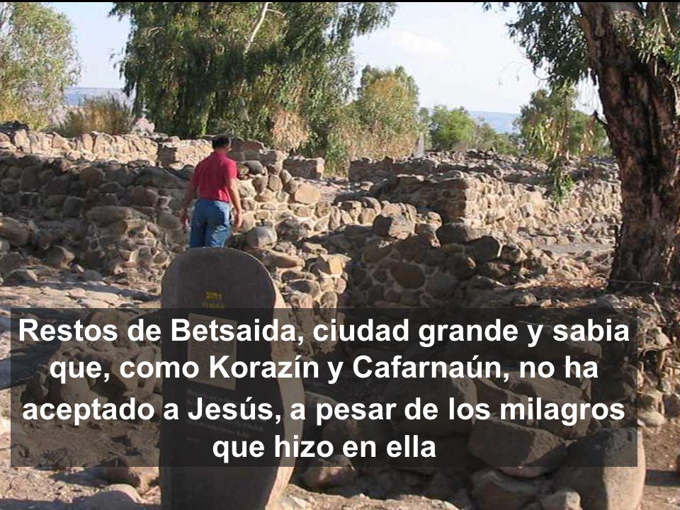 Restos de Betsaida, ciudad grande y sabia que, como Korazín y Cafarnaún, no ha aceptado a Jesús, a pesar de los milagros que hizo en ella