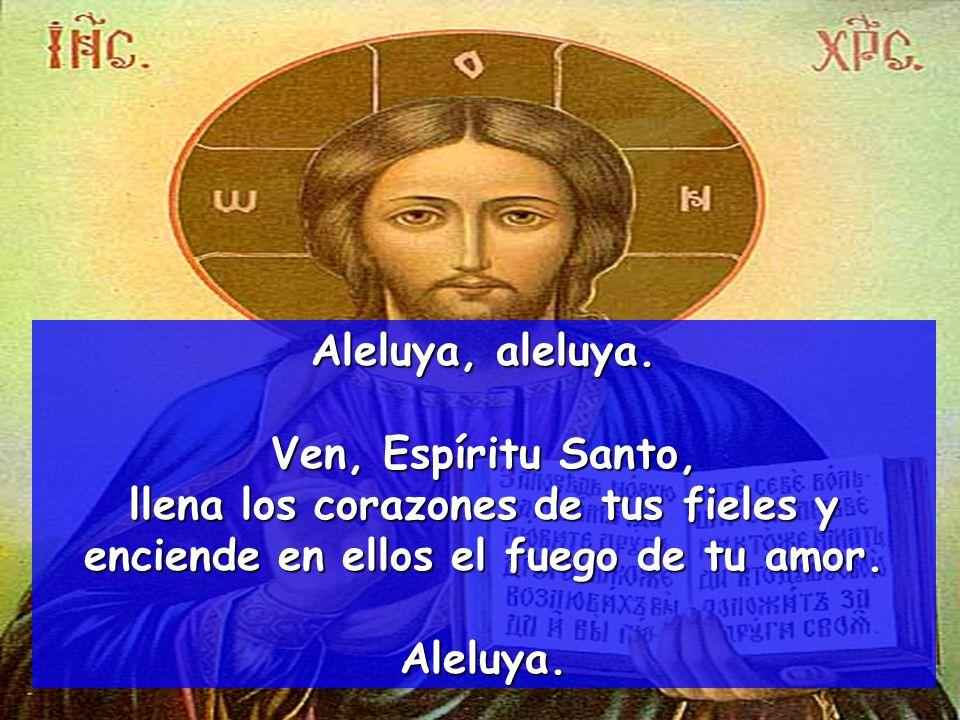Aleluya, aleluya. Ven, Espíritu Santo, llena los corazones de tus fieles y enciende en ellos el fuego de tu amor.