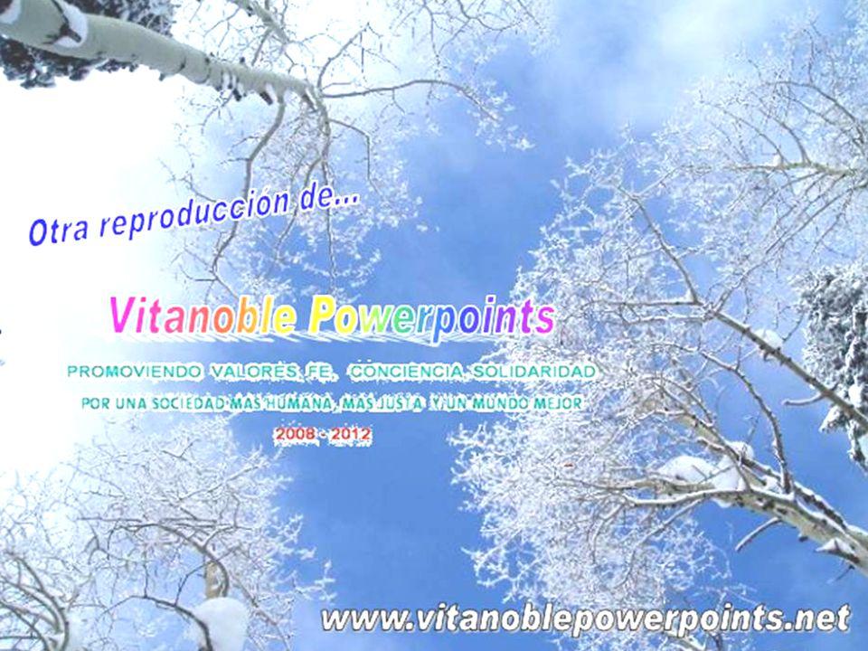 VitaNoble PowerPoints