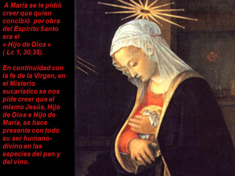 A María se le pidió creer que quien concibió por obra del Espíritu Santo