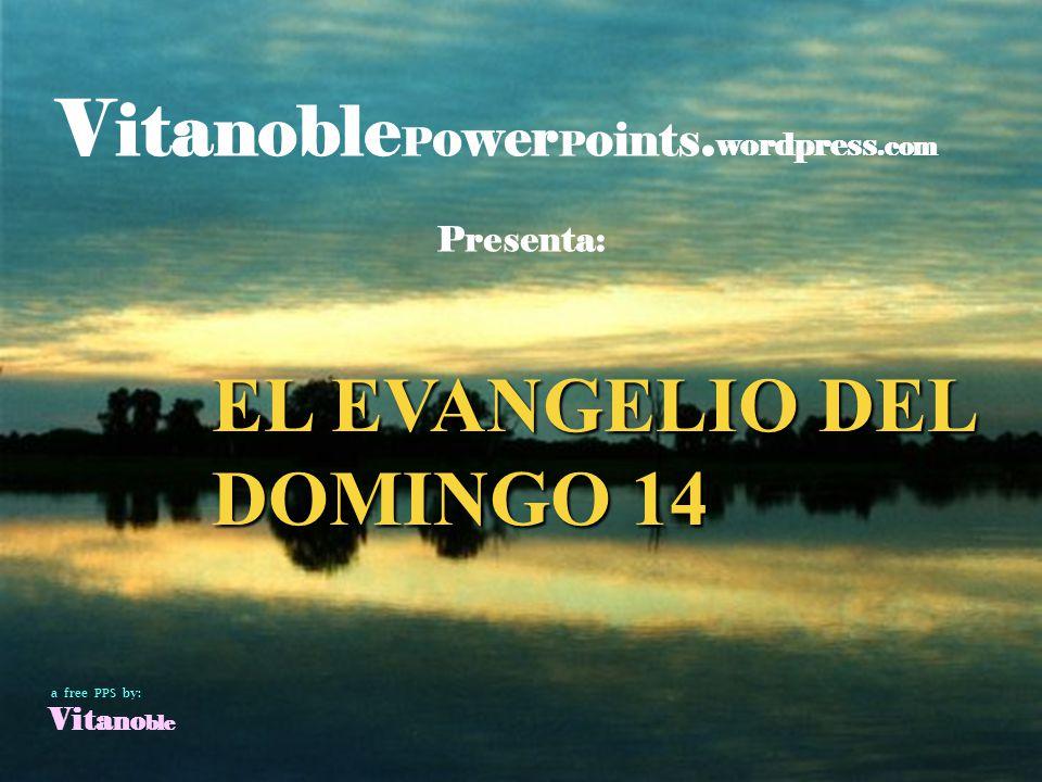 EL EVANGELIO DEL DOMINGO 14