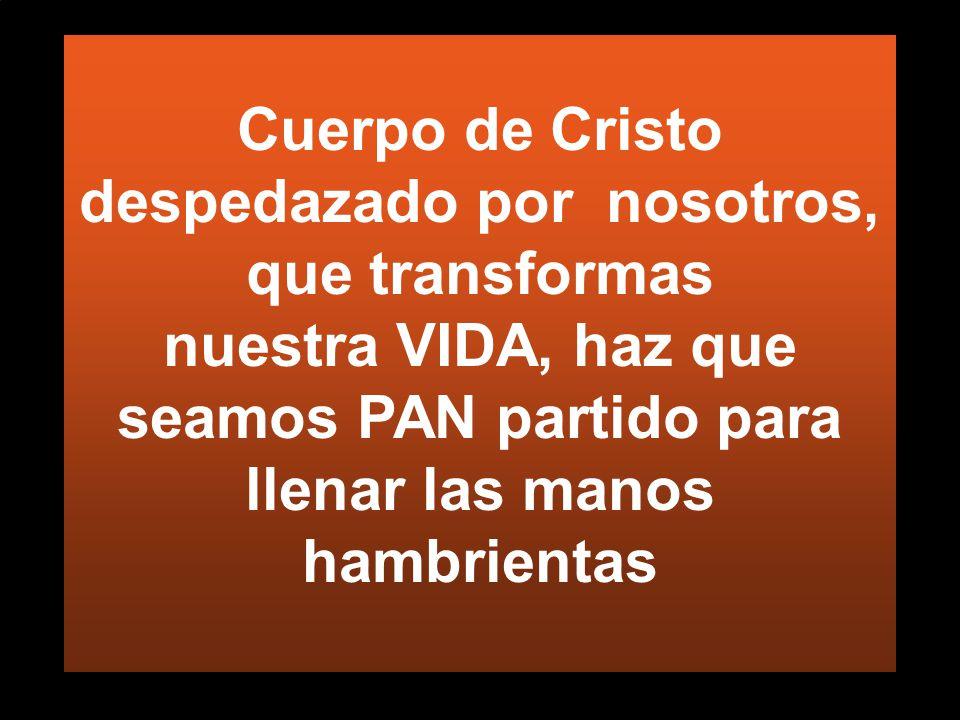 Cuerpo de Cristo despedazado por nosotros, que transformas nuestra VIDA, haz que seamos PAN partido para llenar las manos hambrientas
